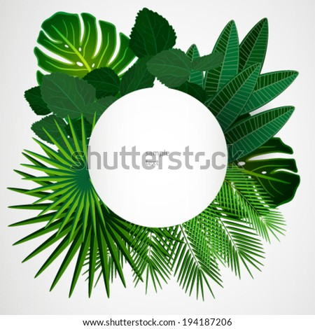 Tropical leaves. Floral design background. - stock vector