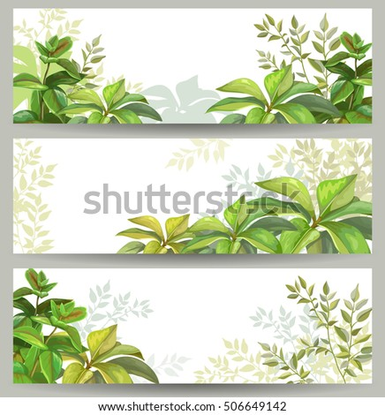 Tropical leaves. Horizontal banner set.