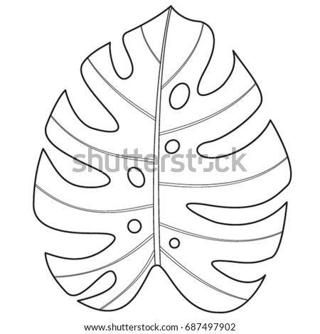 tropical monstera leaf vector illustration stock vector 687497902 shutterstock. Black Bedroom Furniture Sets. Home Design Ideas