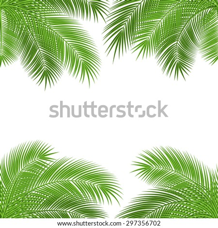 Tropical palm leaves. design background. vector illustration - stock vector