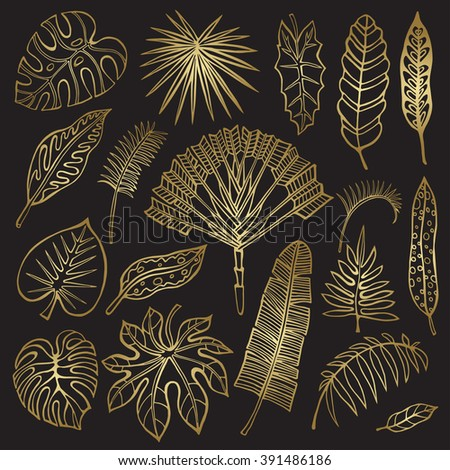 Tropical palm leaves set.Vector leaf,outline drawing in vintage style.Isolated on white.Monstera leaves.Tree branches.Exotic graphic  illustration,tropic paradise collection.Plant Gold vector,summer - stock vector