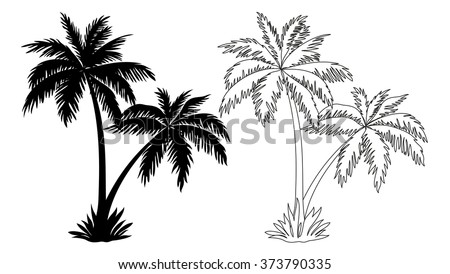 tropical palm trees black silhouettes outline stock vector 373790335 rh shutterstock com African Tree Vector Tropical Leaves Vector