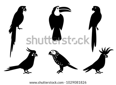 Bird Silhouette Stock Images, Royalty-Free Images ...