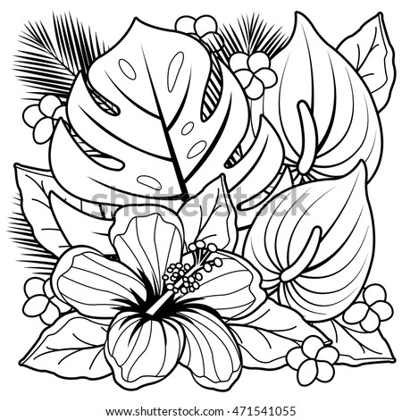 tropical plants and hibiscus flowers coloring book page - Flowers Coloring Book