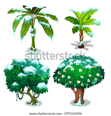 Tropical trees and plants frozen under the snow. Vector illustration. - stock vector