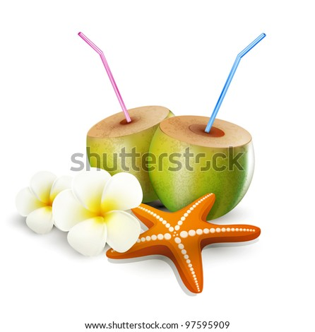 tropical vector elements for design on a white background (starfish, coconut drink, flowers) - stock vector