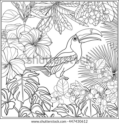 Tropical Wild Birds And Plants Garden Collection Coloring Page Book For