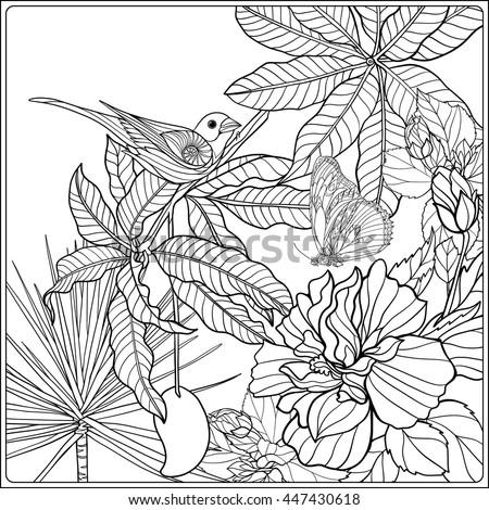 Tropical Wild Birds Plants Tropical Garden Stock Vector