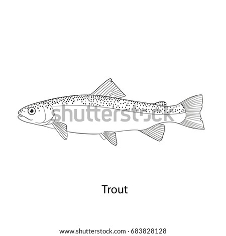 Trout fish icon line stock vector 683828128 shutterstock trout fish icon line freerunsca Images