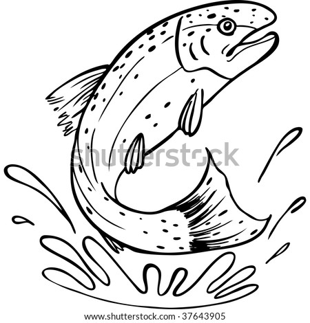 Trout Jumping Stock Photos Images Amp Pictures Shutterstock