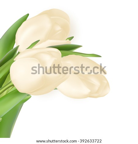 Tulips decorative background with copy space. EPS 10 vector file included