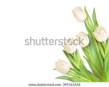 Tulips decorative background with copy space. EPS 10 vector file included - stock vector