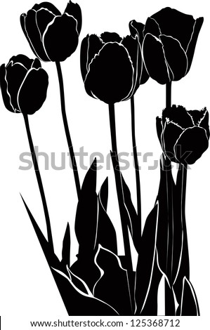 tulips flowers it is isolated - stock vector