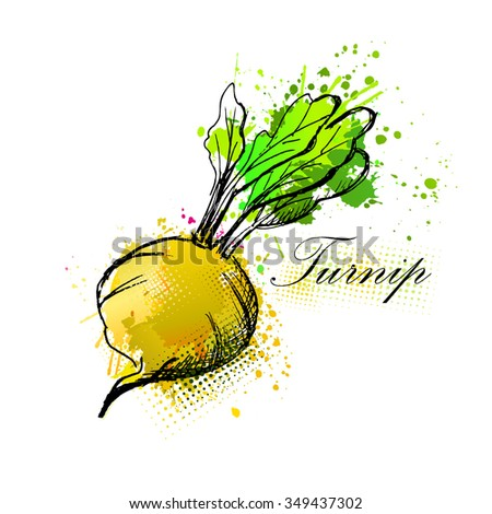 Turnip from the ink spots. Vector - stock vector