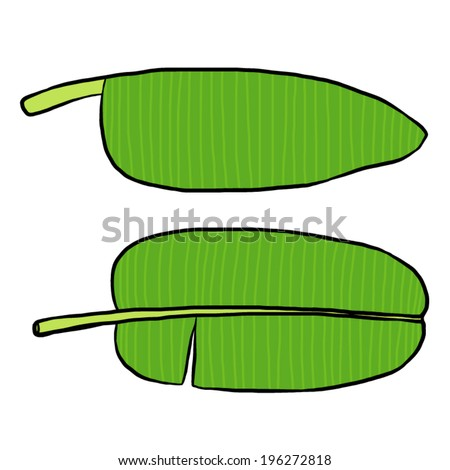 Two Banana Leaves Cartoon Vector And Illustration Hand Drawn Style Isolated On White