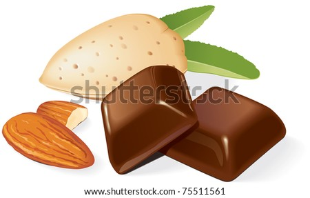 Two chocolate pieces, almonds and shell composition. Vector illustration - stock vector