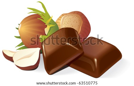 Two chocolate pieces and hazelnuts composition. Vector illustration - stock vector