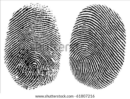 Two detailed vector thumb prints. Easy to edit - stock vector