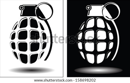 Two different images grenades isolated vector - stock vector