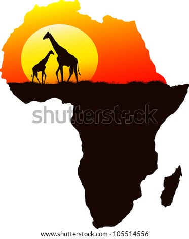 Two giraffes in the background of the setting sun, vector - stock vector