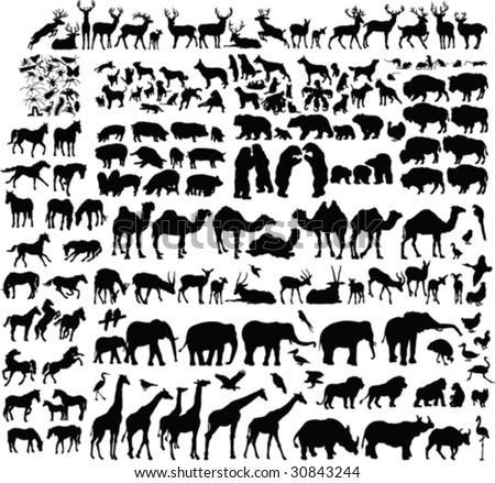 two hundred animal silhouettes - vector - stock vector