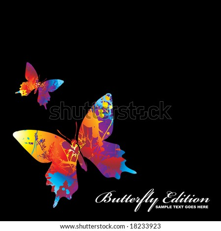 two illustrated colourful butterflys on a black background - stock vector
