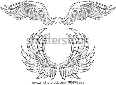 Two kinds of wings an accurate portrayal of feathers - stock vector