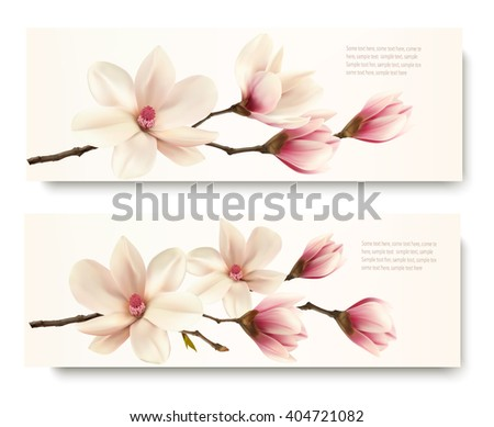 Two nature flower magnolia banners. Vector. - stock vector