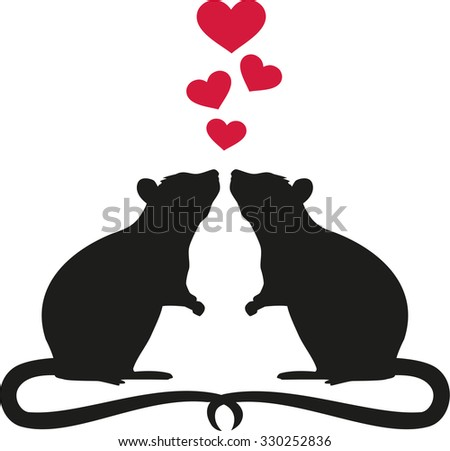 Two rats in love