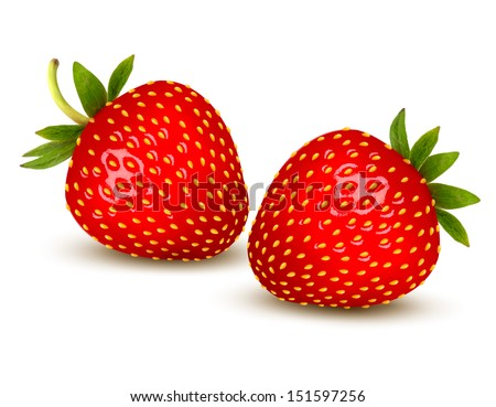 Two ripe strawberries with leaves. Vector. - stock vector