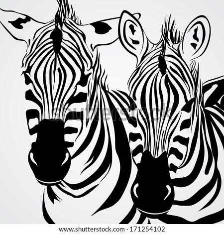 Two zebras. Vector. - stock vector