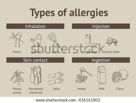 Types of allergies. Scheme - stock vector