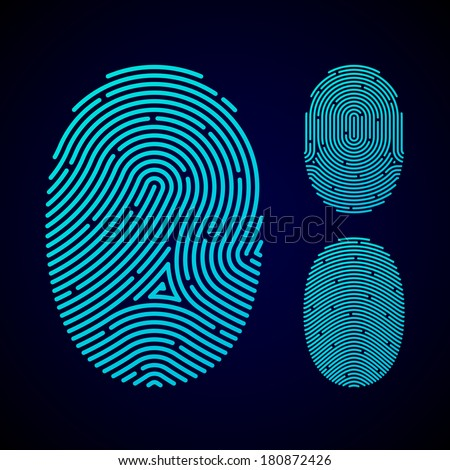 Types of fingerprint patterns - arch, loop and whorl. Vector. - stock vector