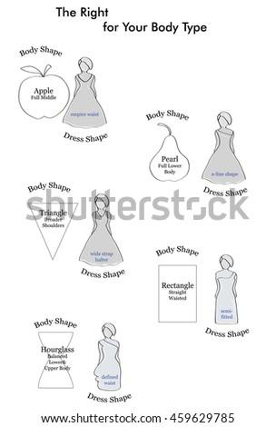Types Of Wedding Dresses Suitable Figure Female Figures Vector Illustration