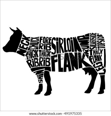 typographic beef butcher cuts diagram hand stock vector