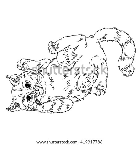 Uncolored Sketch illustration in coloring book style of playful cats. Hand-drawn, vector could be for colouring books. the best for your design, colouring cards, adult coloring book. Black and white.  - stock vector