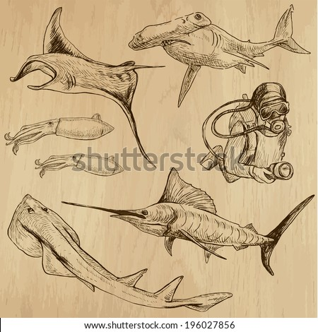 Underwater, Sea Life (vector set no.3)  - Collection of an hand drawn illustrations. Description: Each drawing comprise of two basic layers of outlines, the colored background is isolated. - stock vector