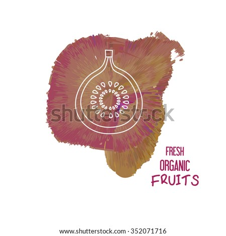 Unique illustration with line icon of figs. Fresh organic fruits concept. Modern linear style, isolated vector on purple watercolor background. Organic, bio, ecology, natural logo design template. - stock vector