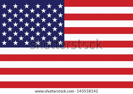 United States Flag. Vector Format