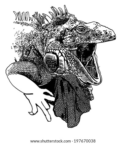 Unusual original artwork of iguana lizard with mouth open realistic sketch black and white drawing