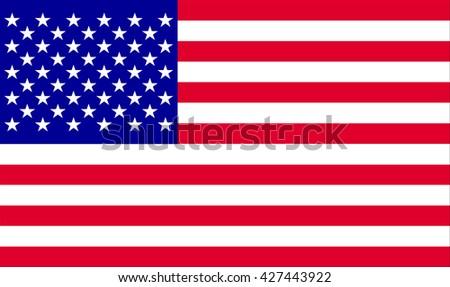USA flag.Vector illustration - stock vector