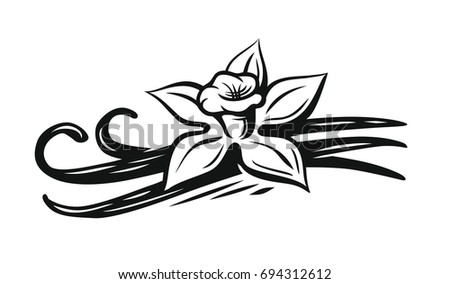 Black Line Flower Drawing : Beautiful monochrome black and white dahlia flower isolated hand