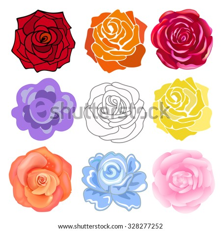 Varicolored roses set isolated on light background, vector illustration