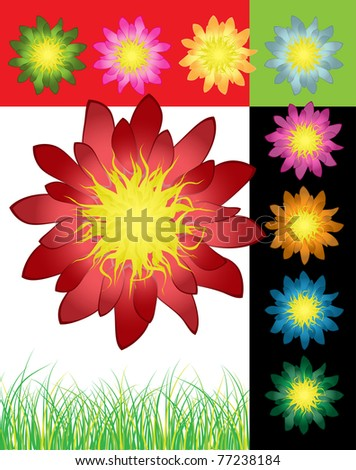 Varicolored set of detailed flowers, vector illustration - stock vector