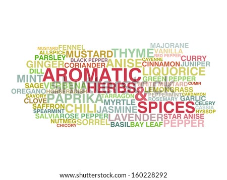 Variety of aromatic herbs and spices. Word cloud concept - stock vector