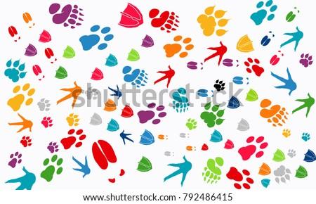 Various Animal Footprint Wallpaper Texture Deer Foot Swan Tiger Chicken Print