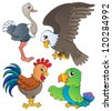Various birds theme set 1 - vector illustration. - stock vector
