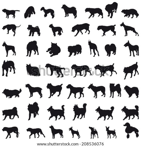 Various breeds many dogs black silhouettes - stock vector