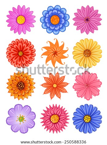 various colorful flower, suitable for various romantic design such as wallpaper, greeting card, and invitation - stock vector