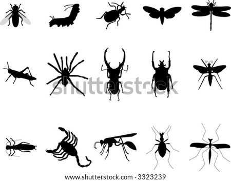 various insects silhouettes